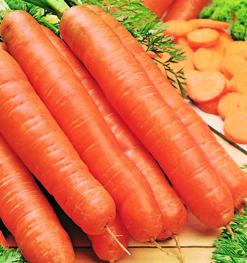 Carrot Little Finger